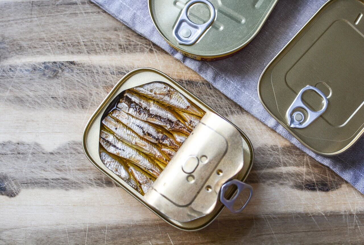 Can Dogs Eat Canned Sardines?